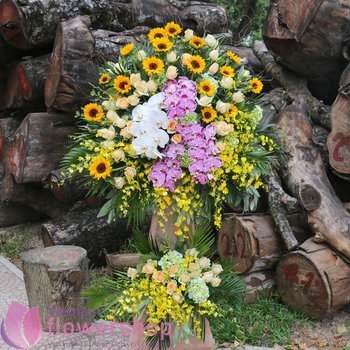 Opening congratulation flowers to Vietnam free ship