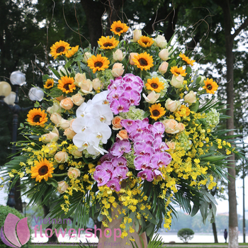 Opening congratulation flowers to Vietnam same day delivery
