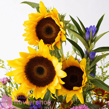 Send sunflower basket to Vietnam
