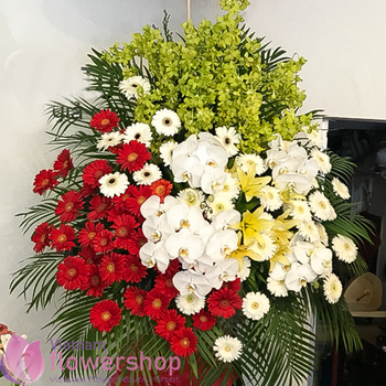 Flowers for opening in Hochiminh city free ship