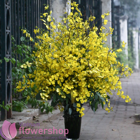 Vietnam flower shop online