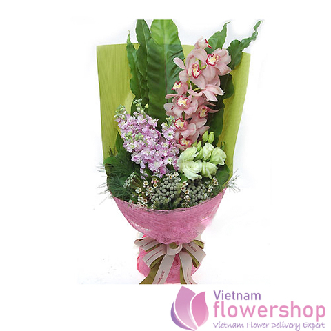 Cymbidium orchids FREE delivery same day