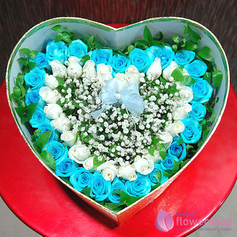 Box of blue roses delivery Haiphong Vietnam