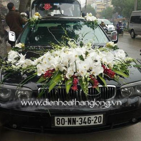 XH010-Wedding Flower Car