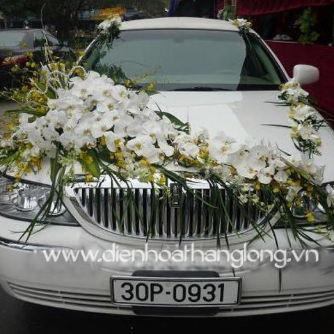 XH013-Wedding Flower Car