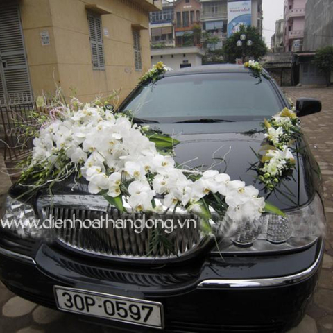 XH014-Wedding Flower Car