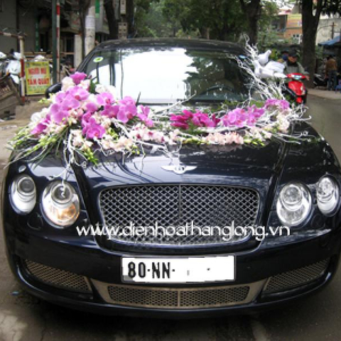 XH019-Wedding Flower Car