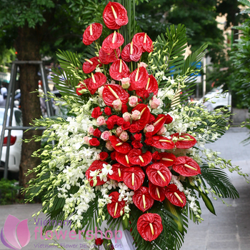 Vietnam congratulation flowers stand free delivery
