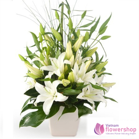 Vietnam Christmas white lily arrangement