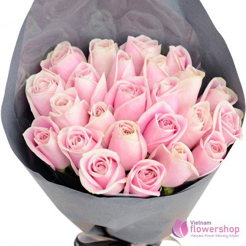 Pretty roses in pink
